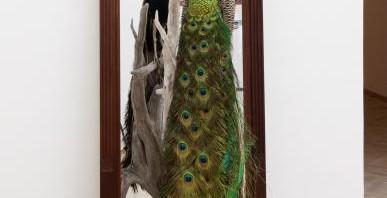 Forårsudstillingen 2012: Diskussion om kunst og design