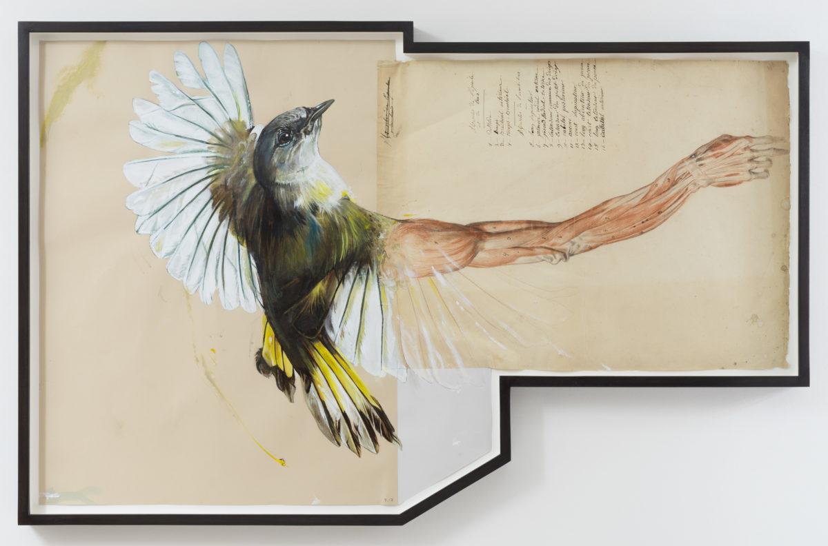 FERNISERING V1 Gallery og Eighteen: Richard Colman (US) og Troels Carlsen (DK) på fredag 31. marts fra 17-22