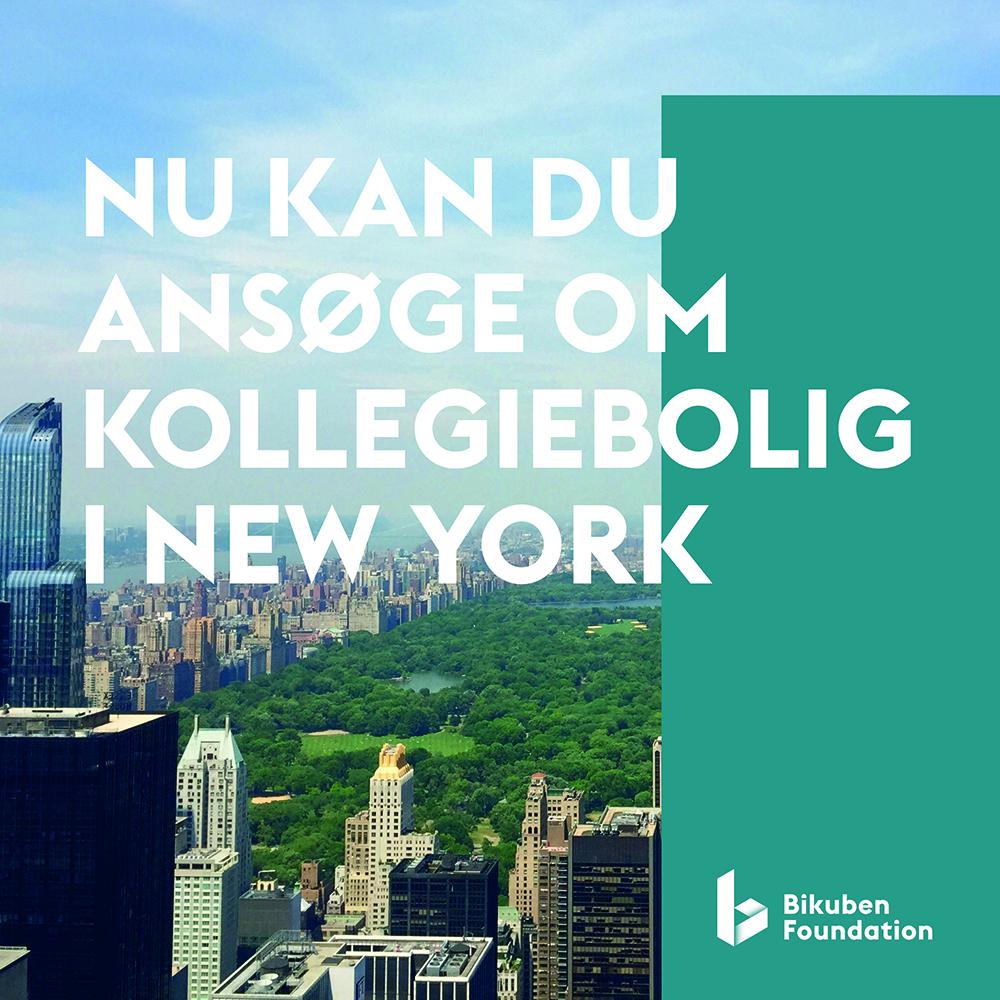 SKAL DU STUDERE I NEW YORK TIL EFTERÅRET?
